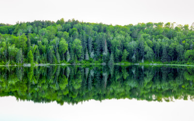 Itasca Reflections
