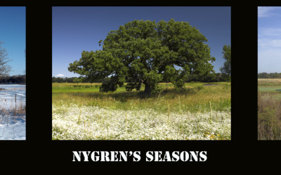 Nygrens Seasons