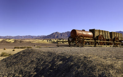 20 MULE WAGON TRAIN